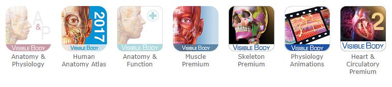 Visible body baser